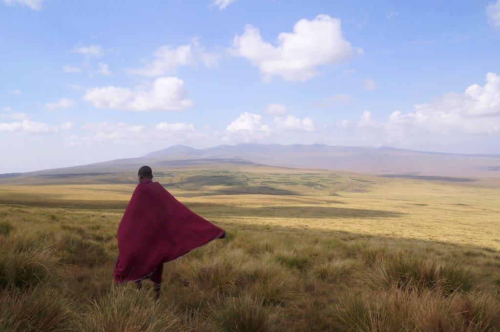 How Many Do You Need In The Masai Mara?